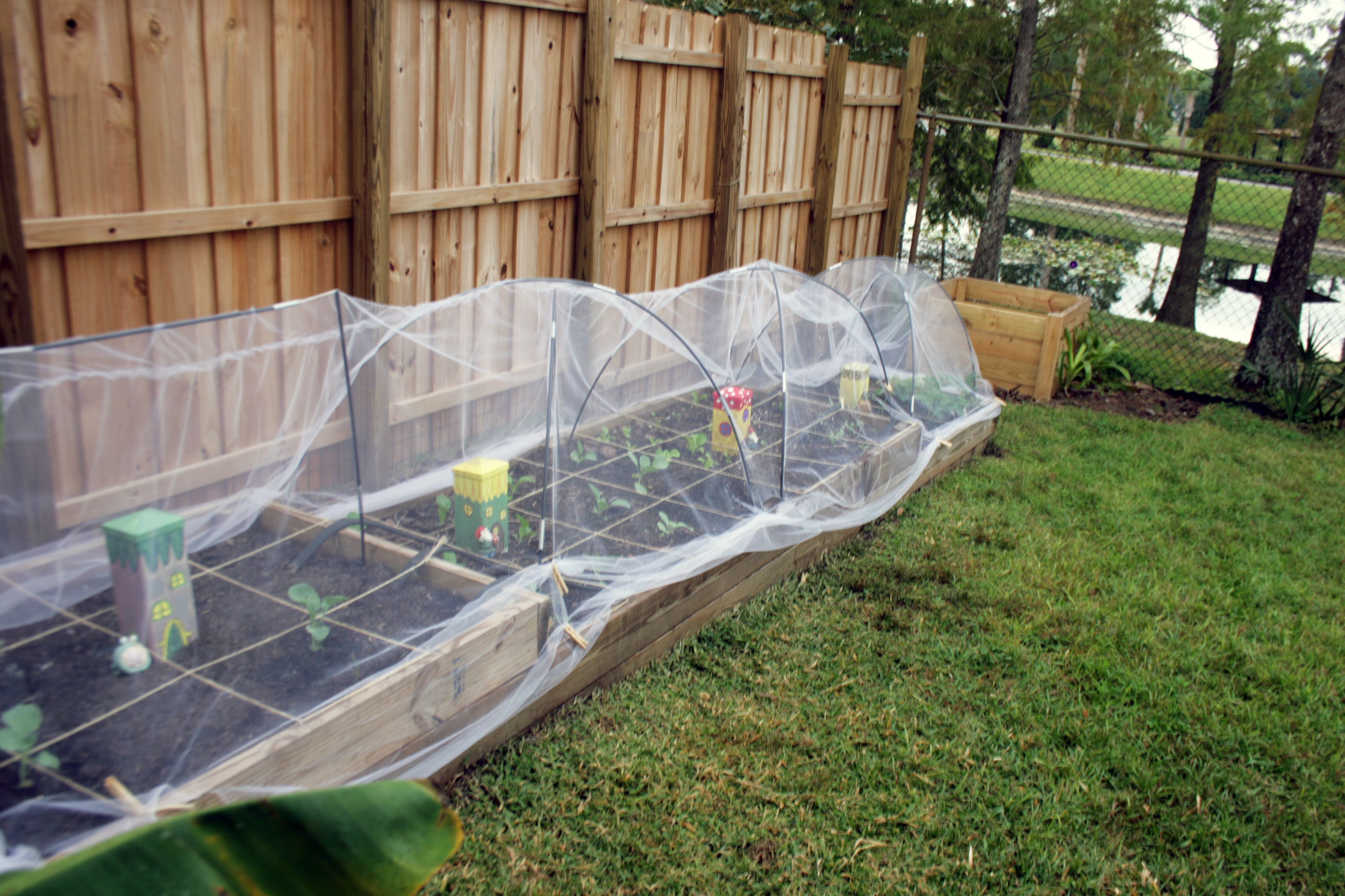 row covers using tulle Our Garden Pinterest Gardens