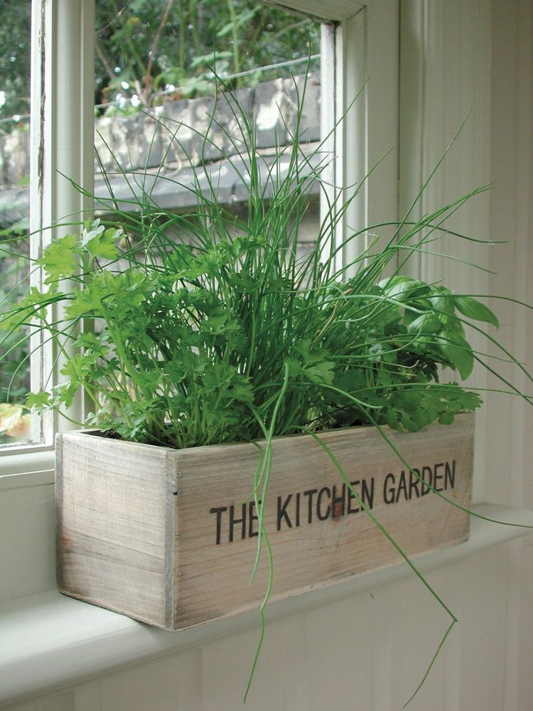 Unwins Herb Kitchen Garden Kit Planter Pot Seeds Flower