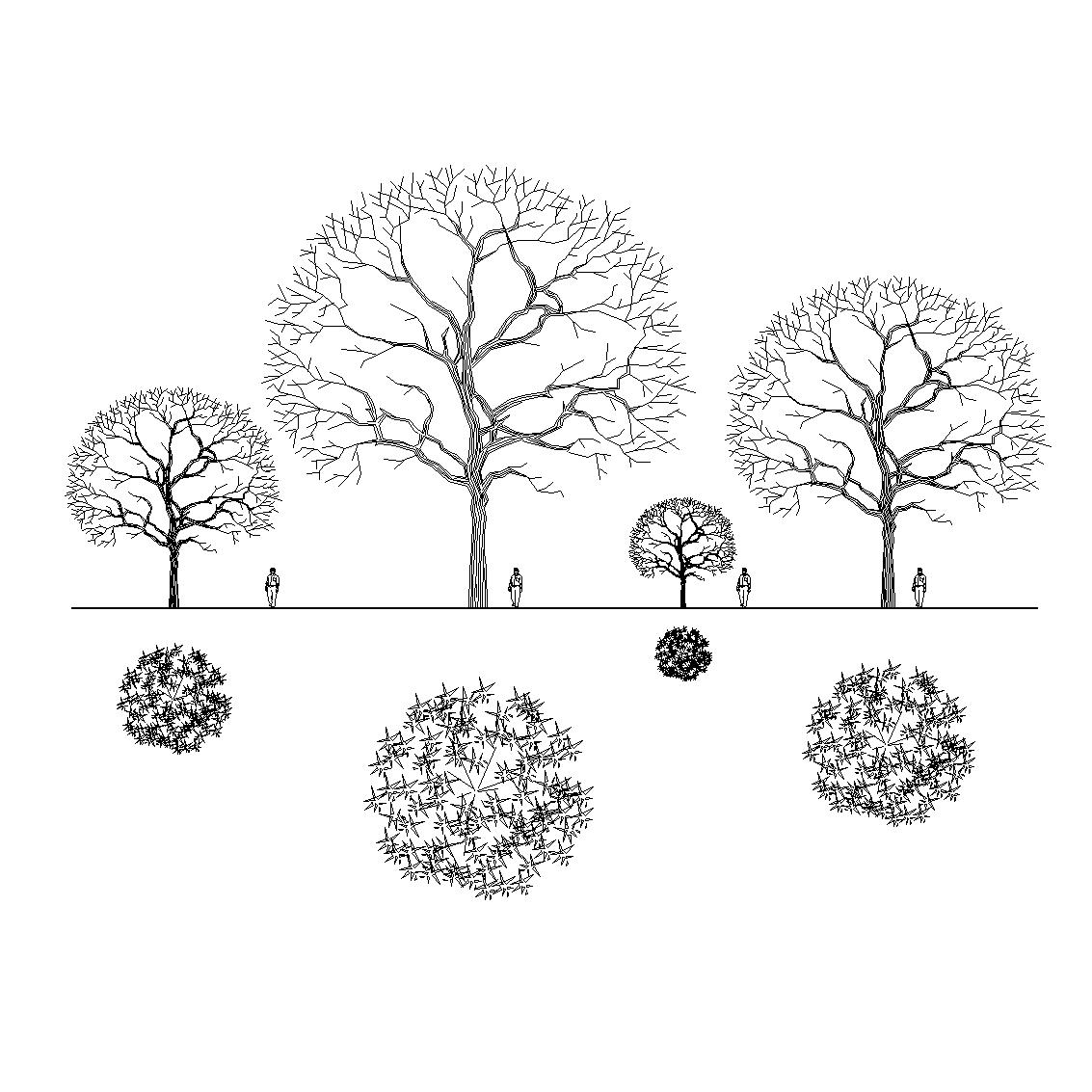 Revit Tree Families | Wiring Diagram Database