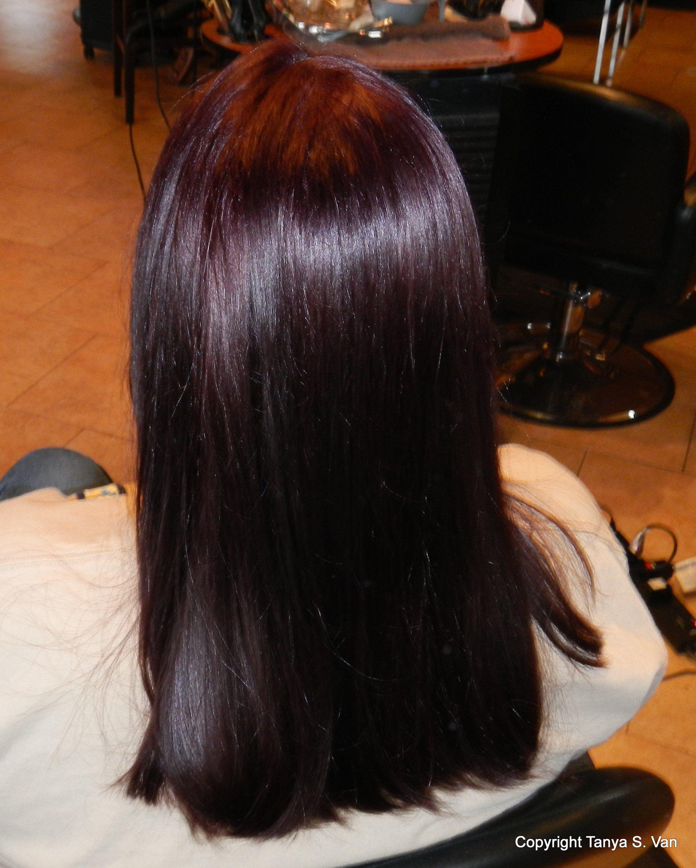 Finally Got My Violet Rusk Level 5 Red Violet Hair