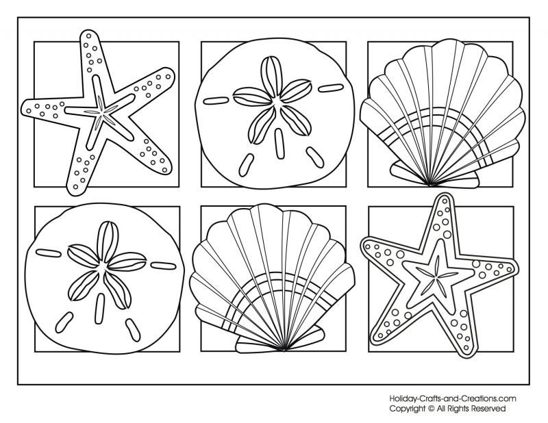 1000 images about applique shells on pinterest coloring pages
