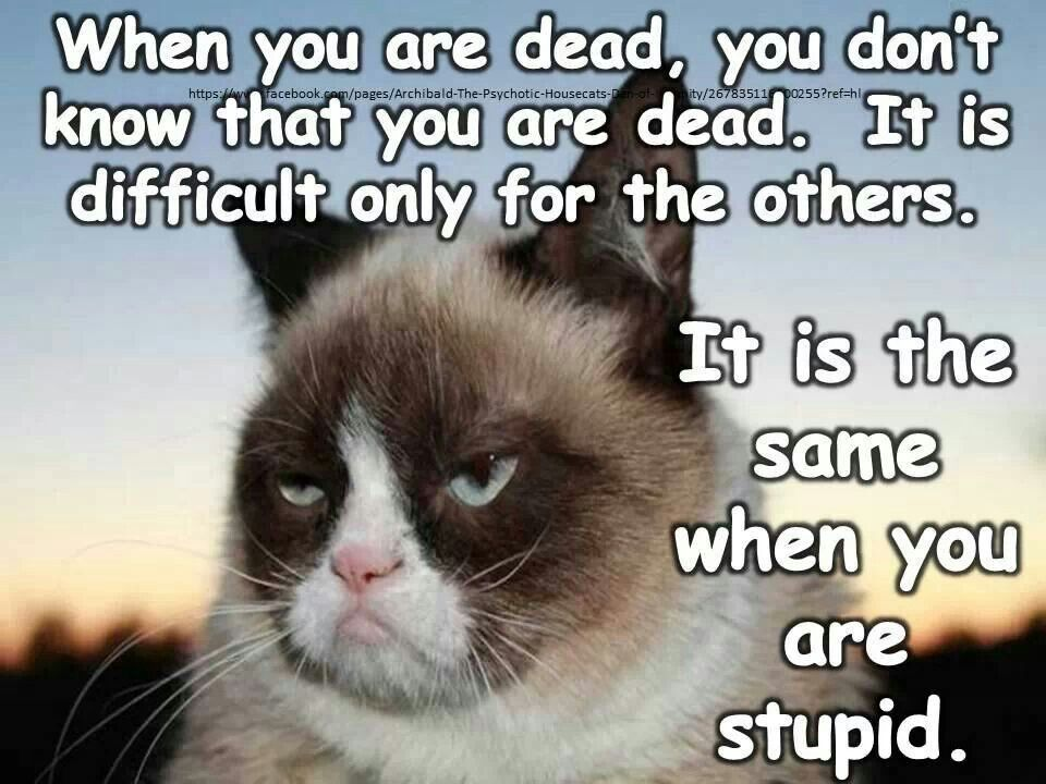 Ha! Just sayin.....When you are dead, you don't know that