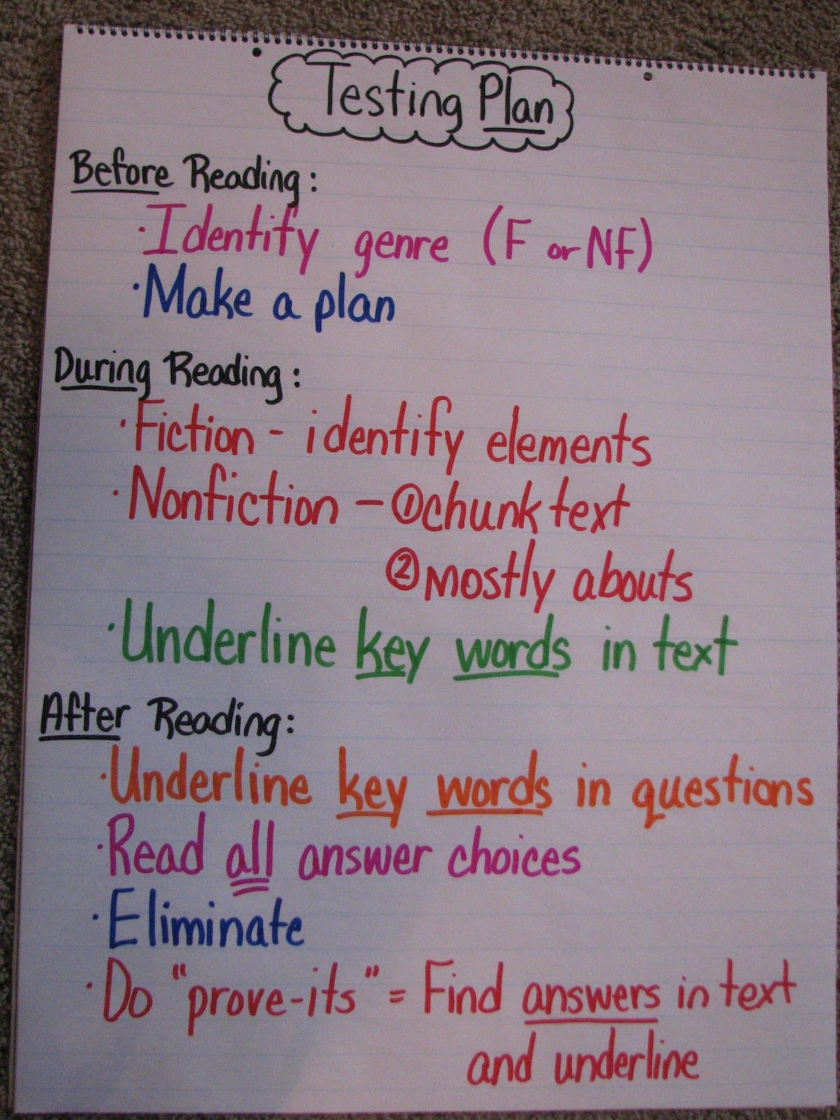 Testing Plan Lesson What Good Readers Do Before During