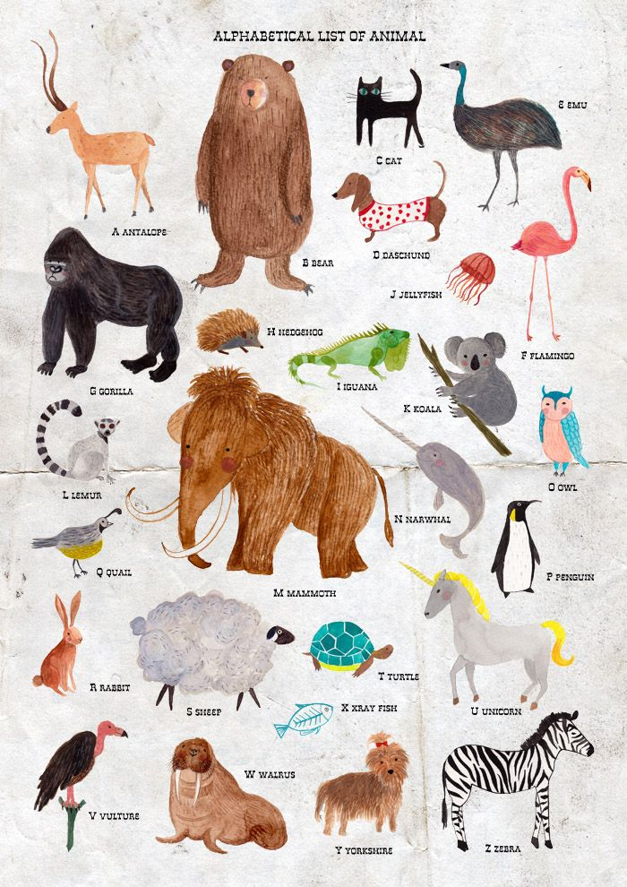 list of animals Google Search preschool characters