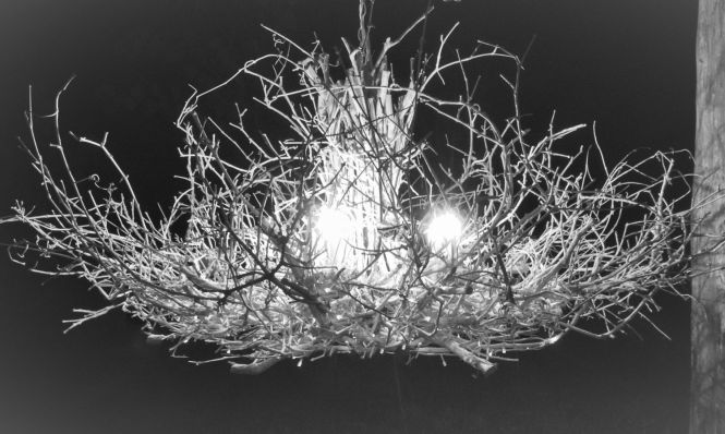 The Queen 6 Light White Chandelier Rustic Twig Branch Handcrafted Ooak