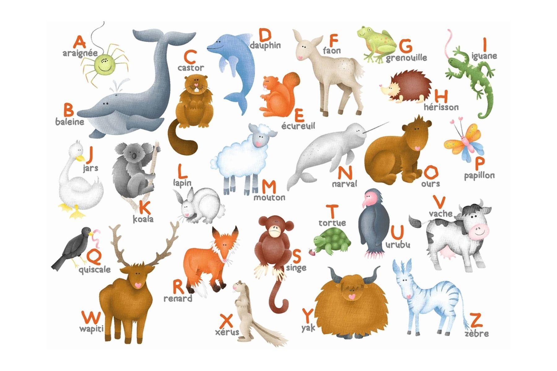 Alphabet des animaux FLE Animaux Pinterest Animaux