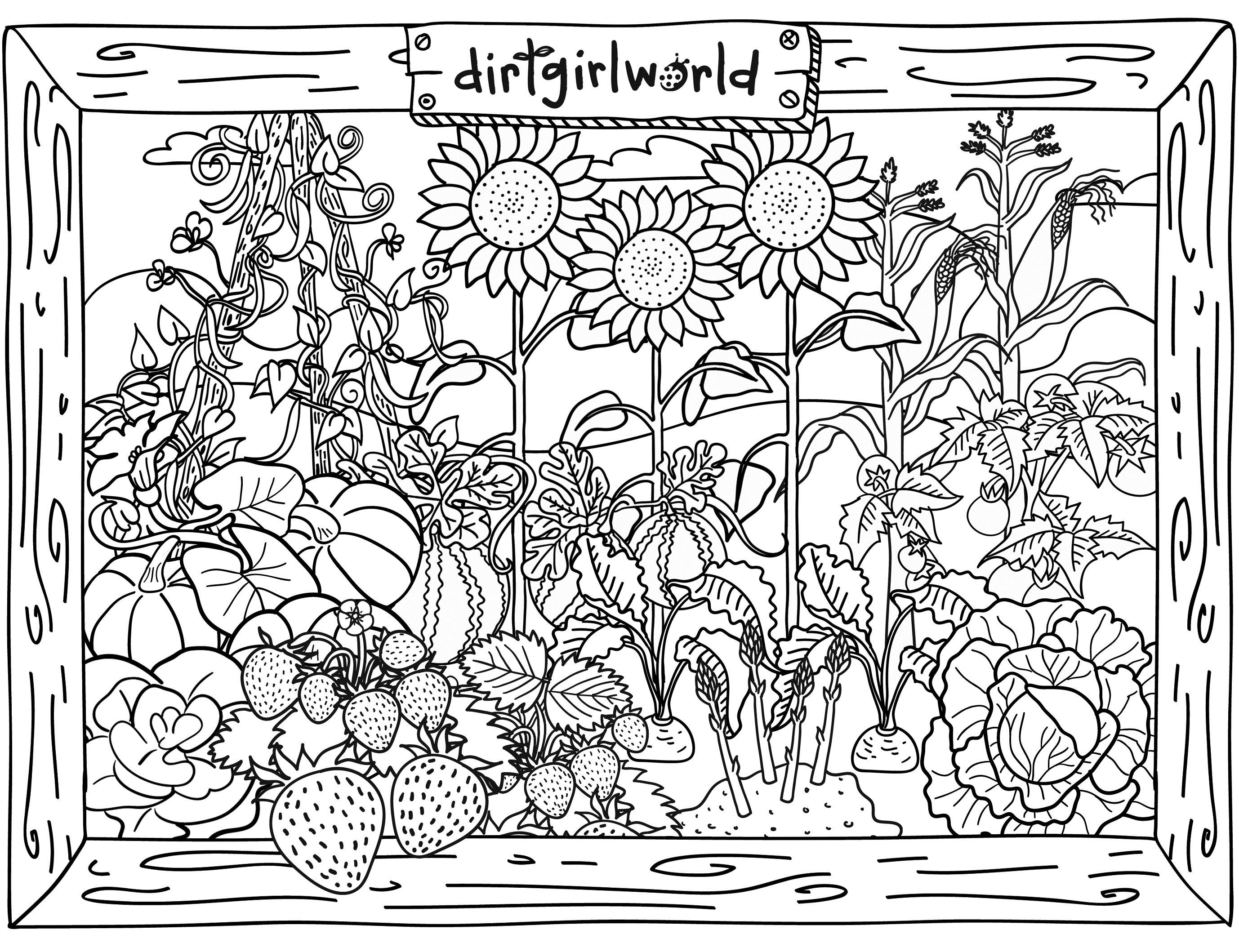 Gardening Activities Colouring Pages