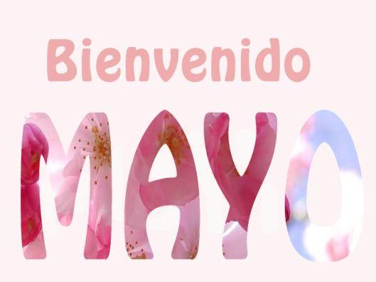 Resultado de imagen para mayo