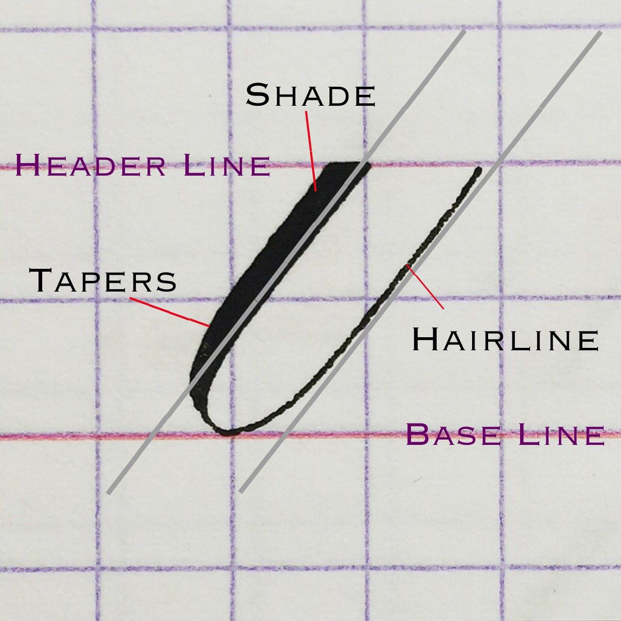 Copperplate Calligraphy Bootcamp How To Practice Underturn Strokes Yaz