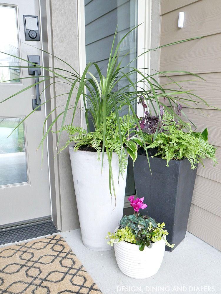 Front Porch Planter Ideas Porch, Planters and Front porches