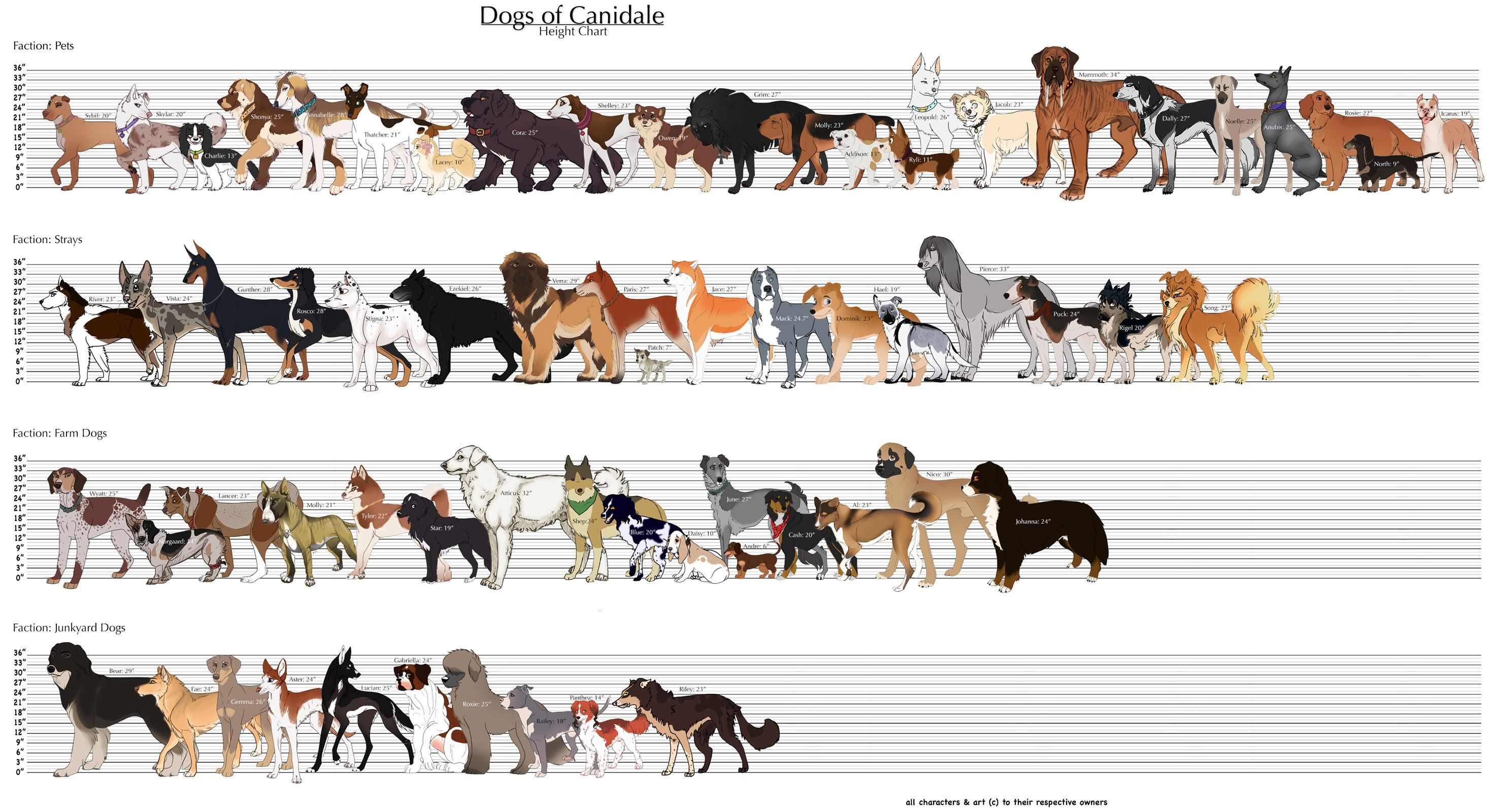 Obviously these are fictional dogs, but could use design