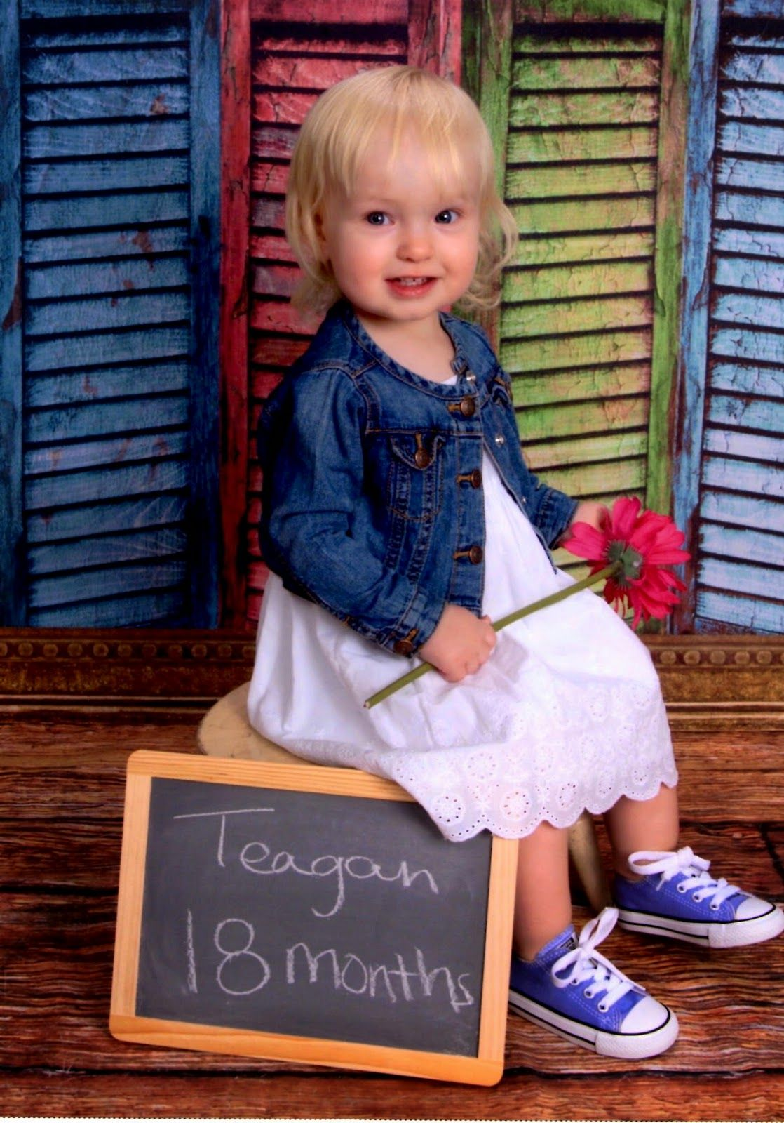 Teagan S 18 Month Professional Pictures
