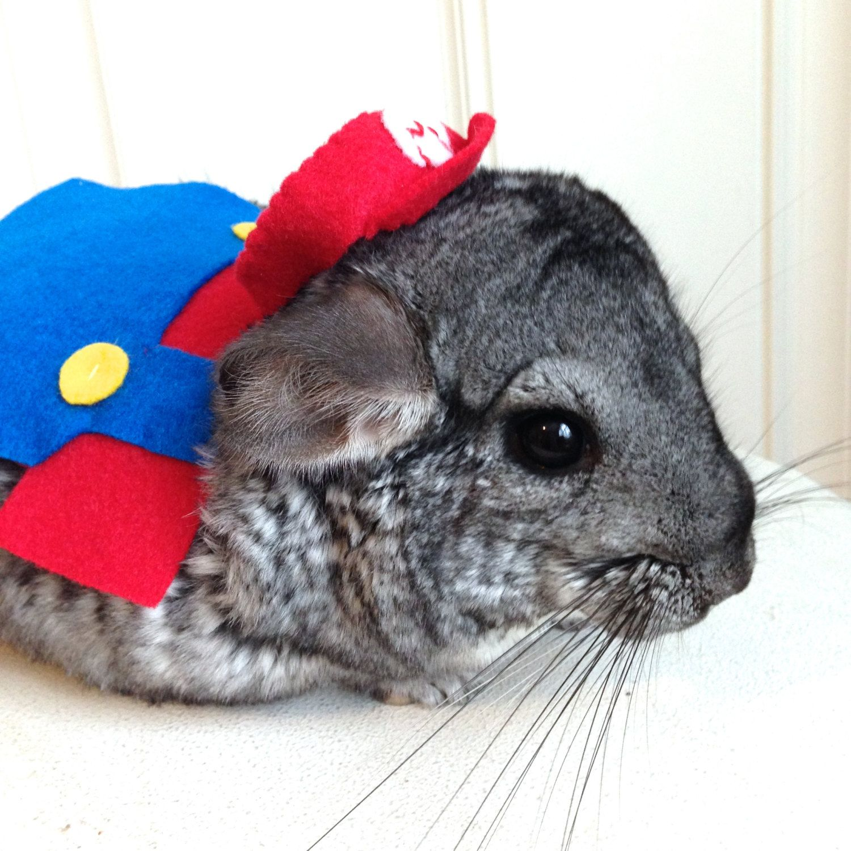 Super Mario Bros costume hamster / guinea pig / chinchilla