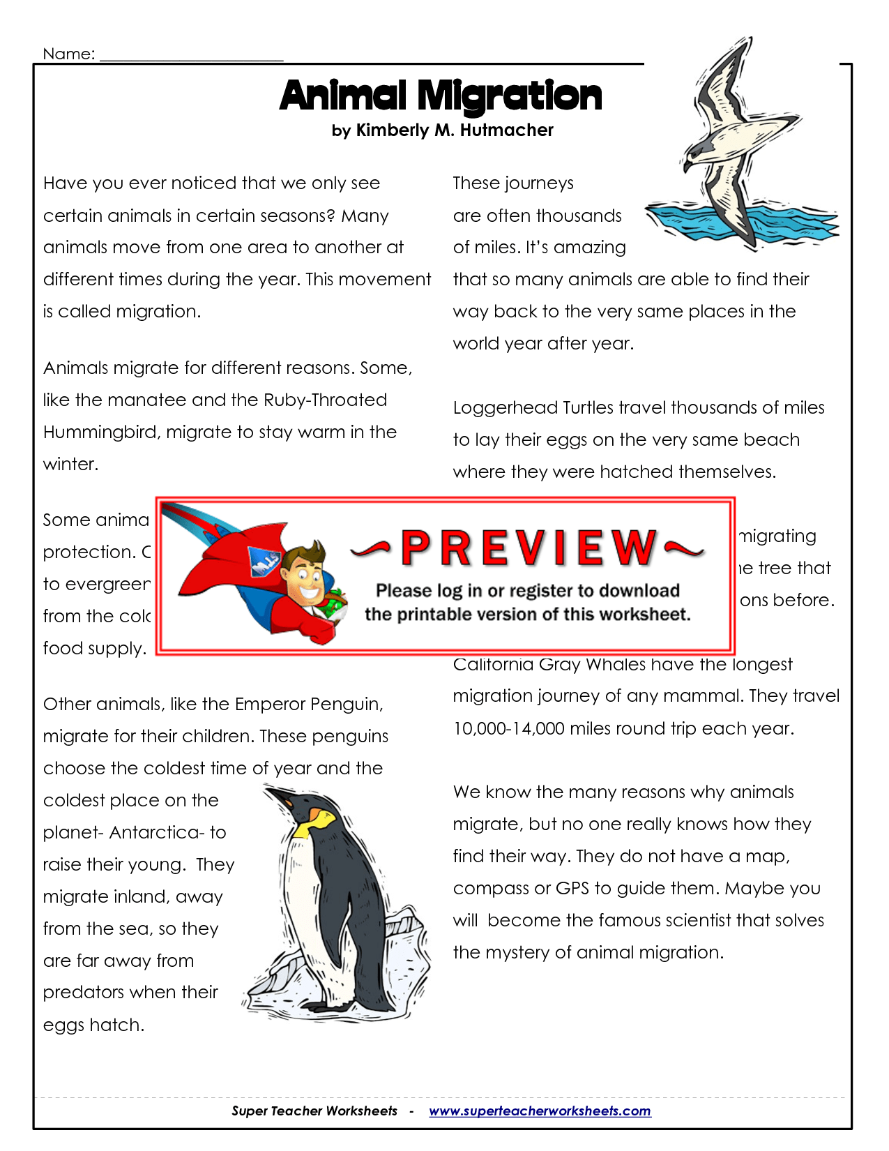 Bird Migration Worksheets