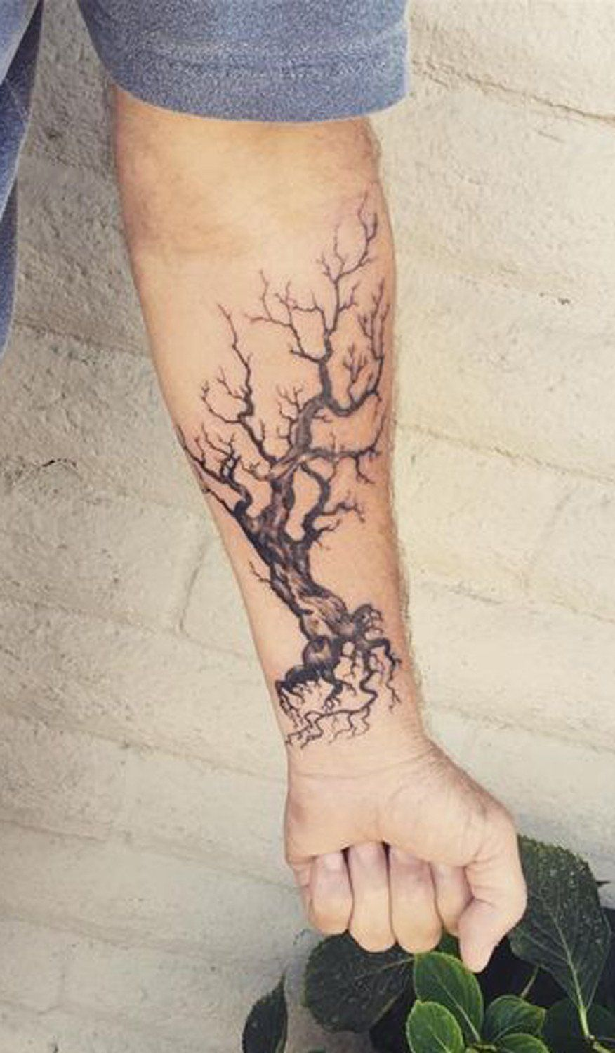 Mens Tattoo Ideas Dead Oak Tree Forearm at