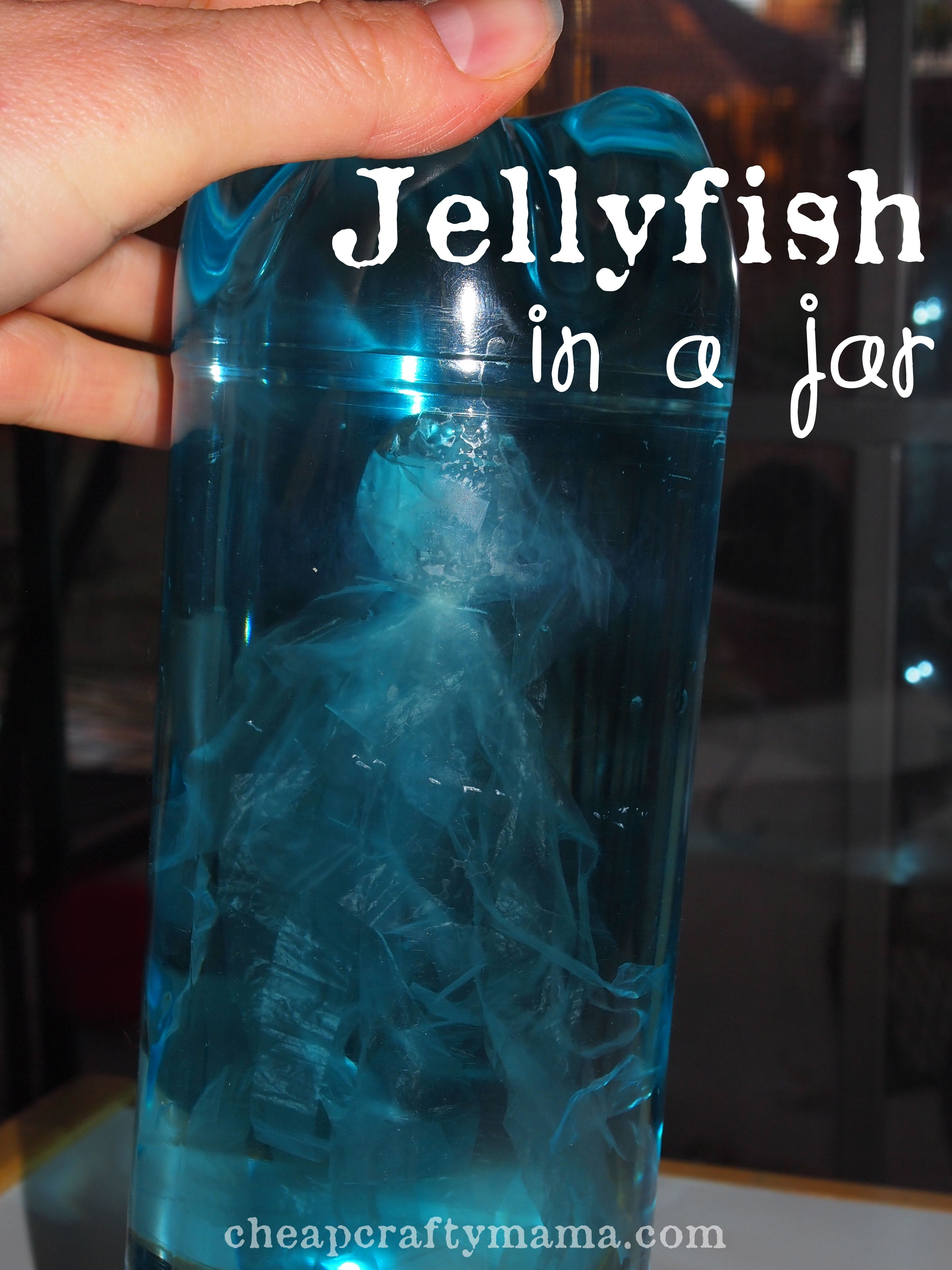 J Is For Jellyfish Jellyfish In Jars Put Food Color