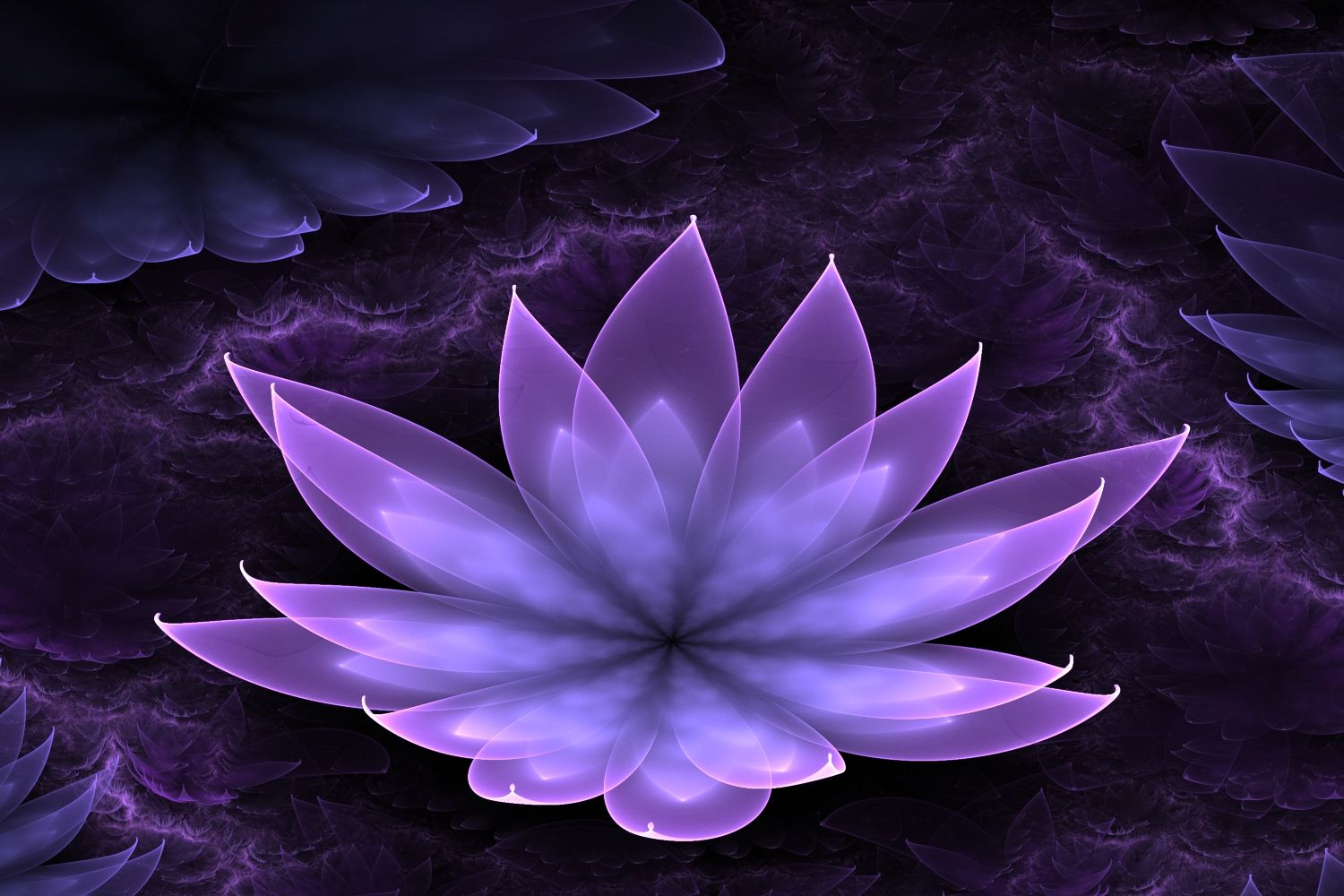 Purple Lotus Flower Wallpapers Photo Natures Wallpapers