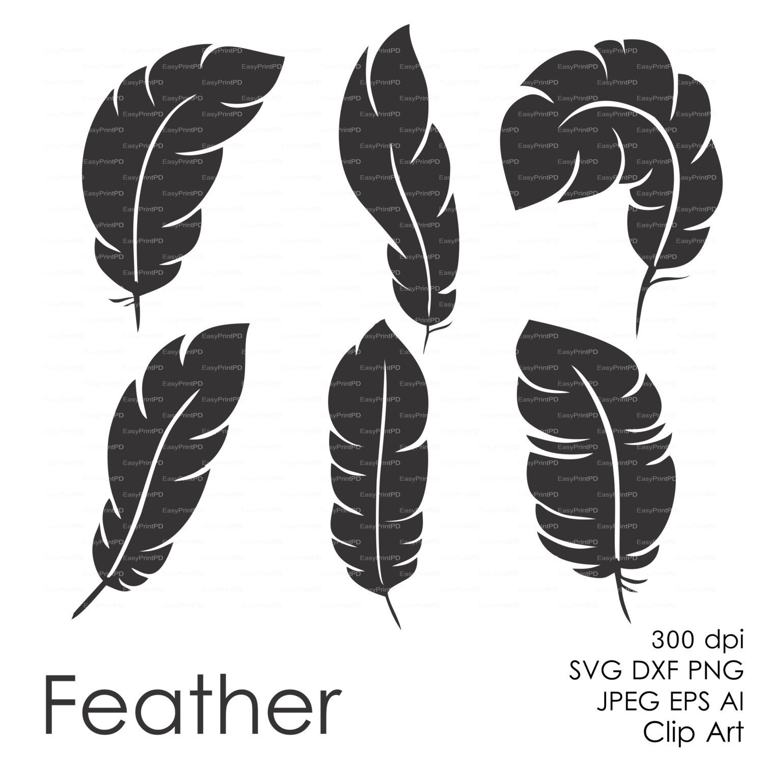 Feather plume (eps svg dxf ai jpg png) Vector Digital