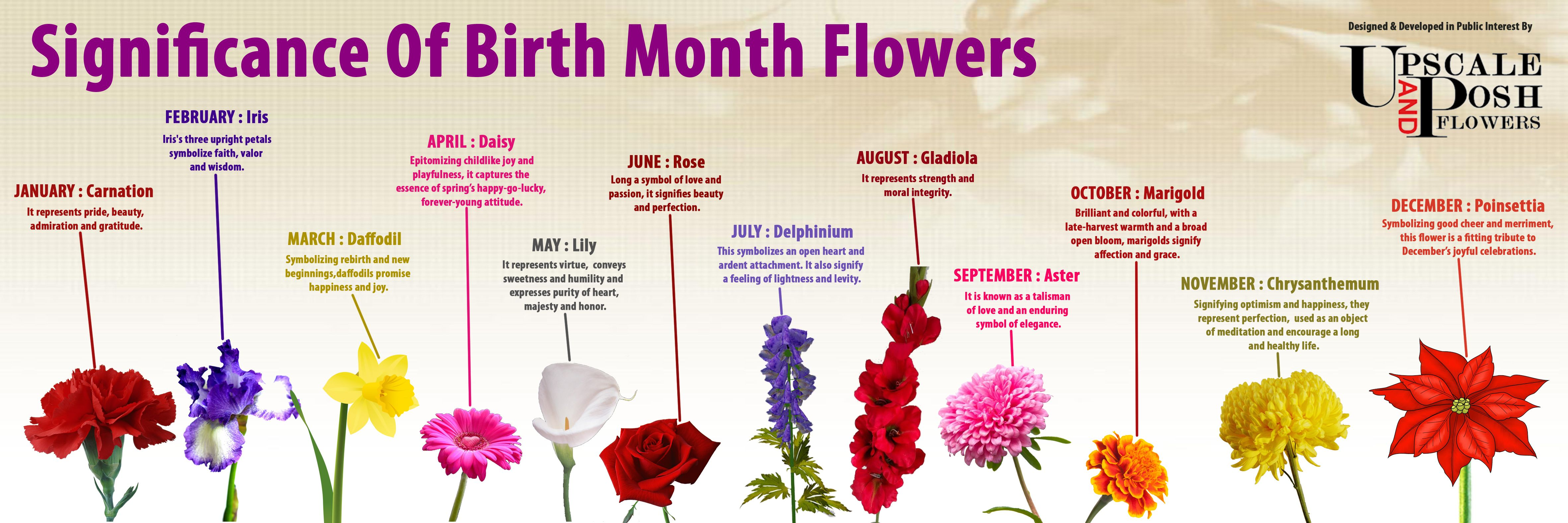 The Significance of Birth Month Flowers A Calendar of