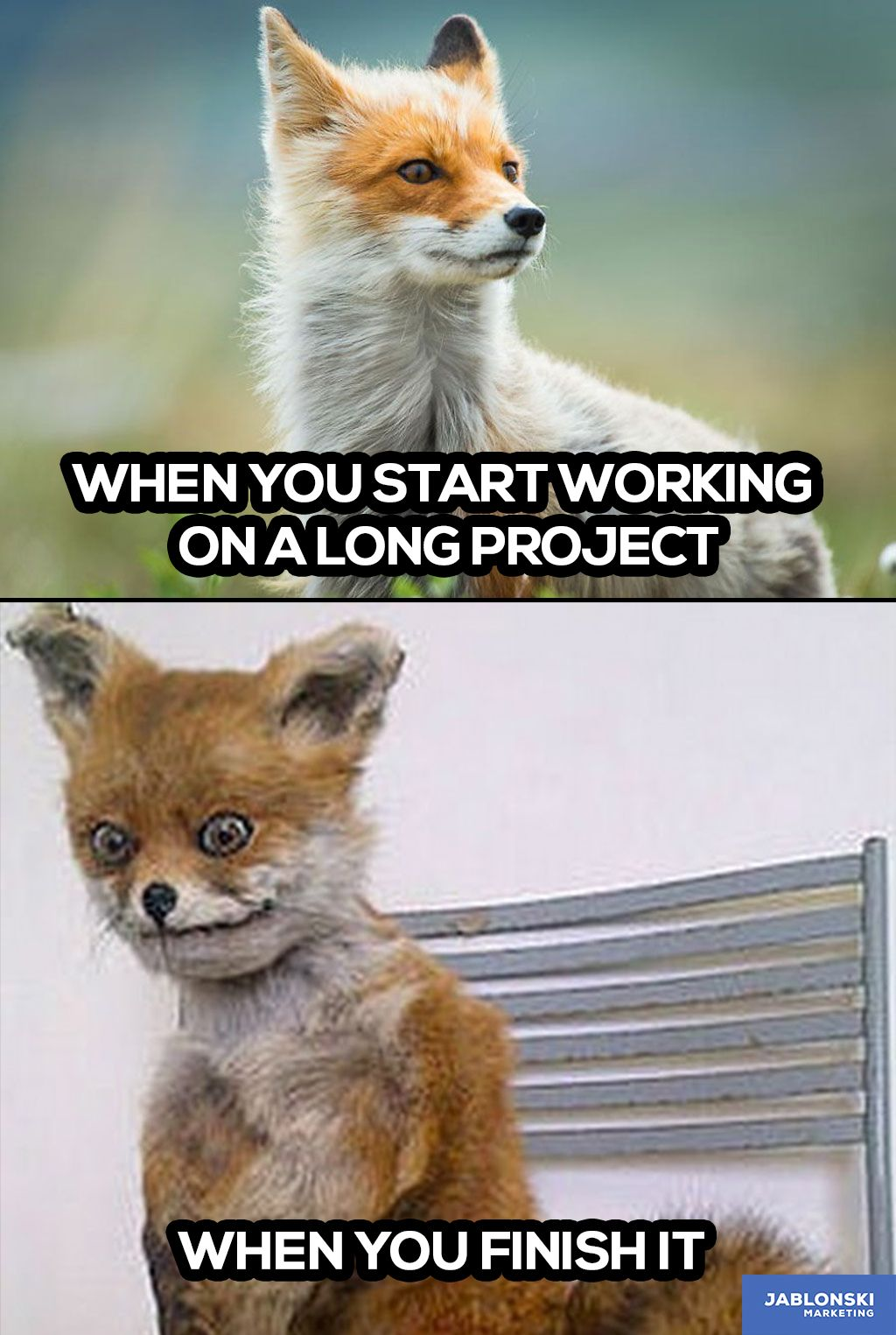 When you start working on a long project, when you finish