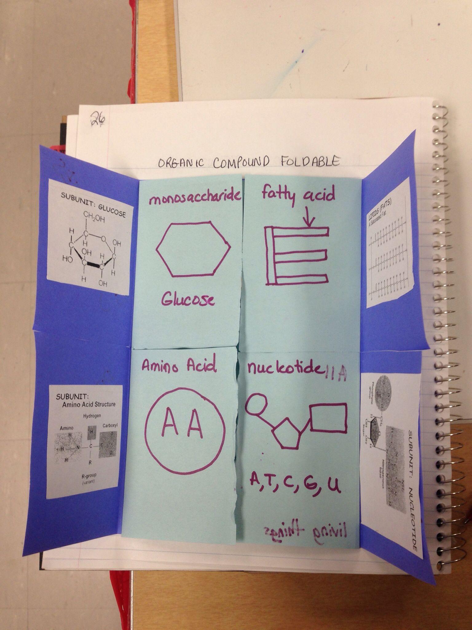 Organic Compounds Foldable Foldable