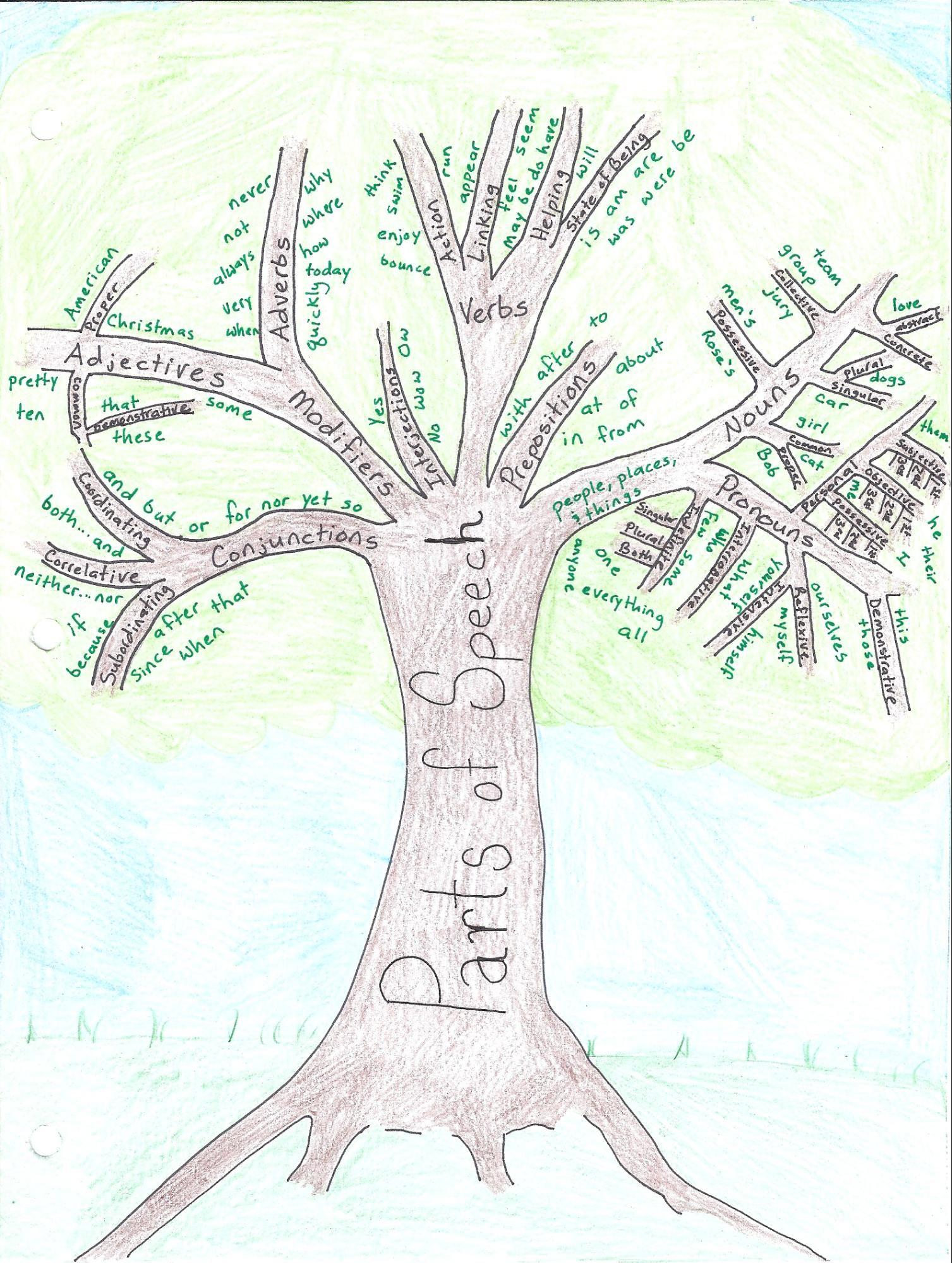 Week 1 English Grammar Parts Of Speech Tree Cool