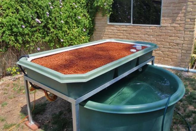 Backyard aquaponics systems for sale visit my personal
