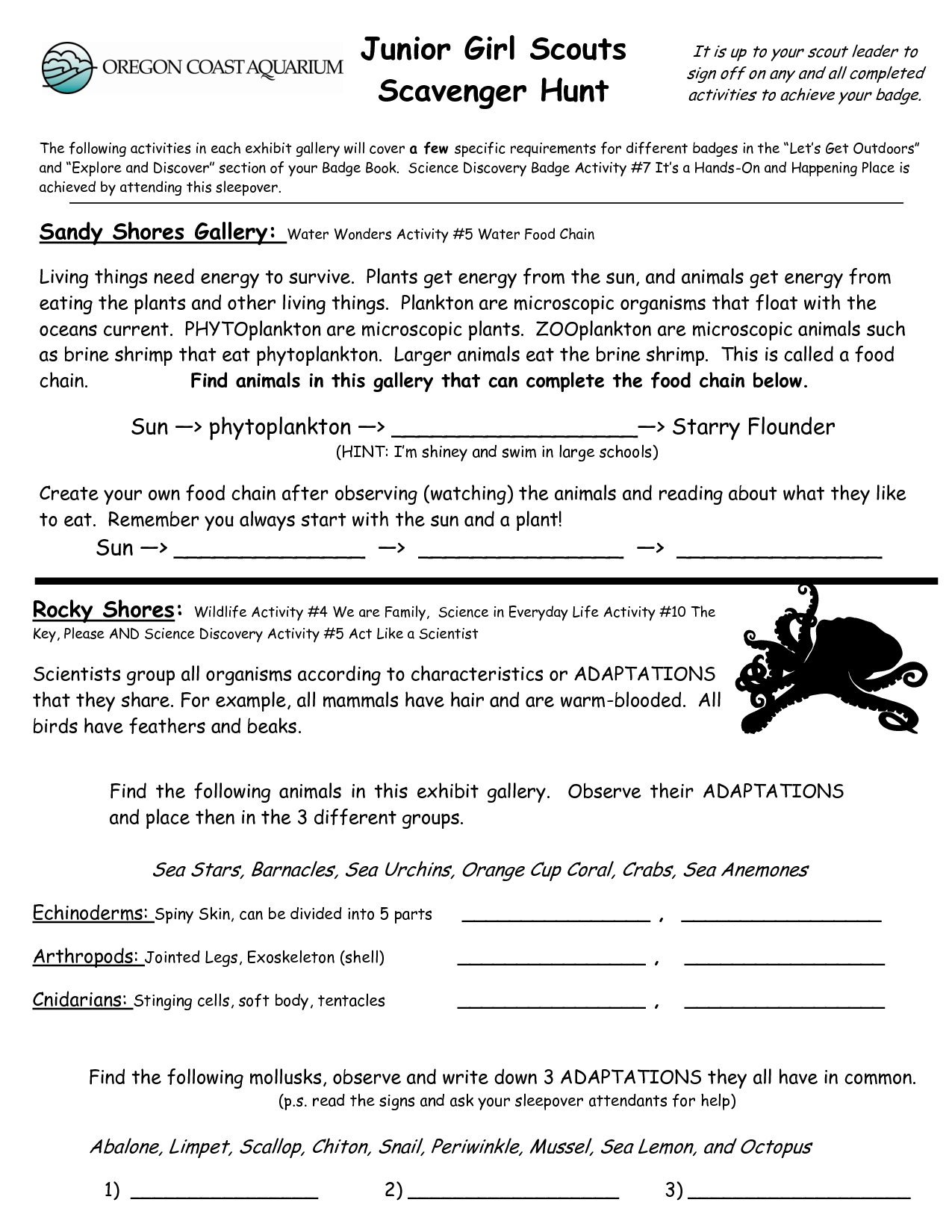 Junior Girl Scout Badge Worksheets Junior Girl Scouts Scavenger Hunt Girl Scouts