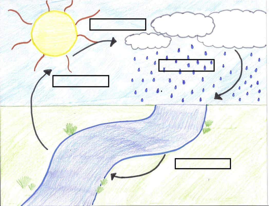 Blank Water Cycle Diagram Worksheet