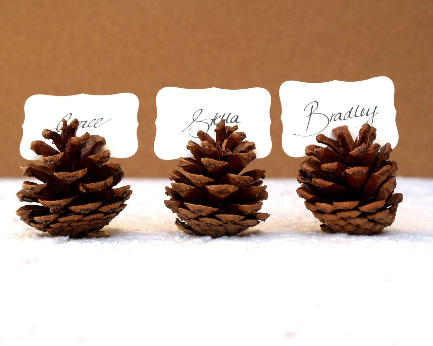Woodland Wedding Place Cards 20 Pine Cone Holder Table