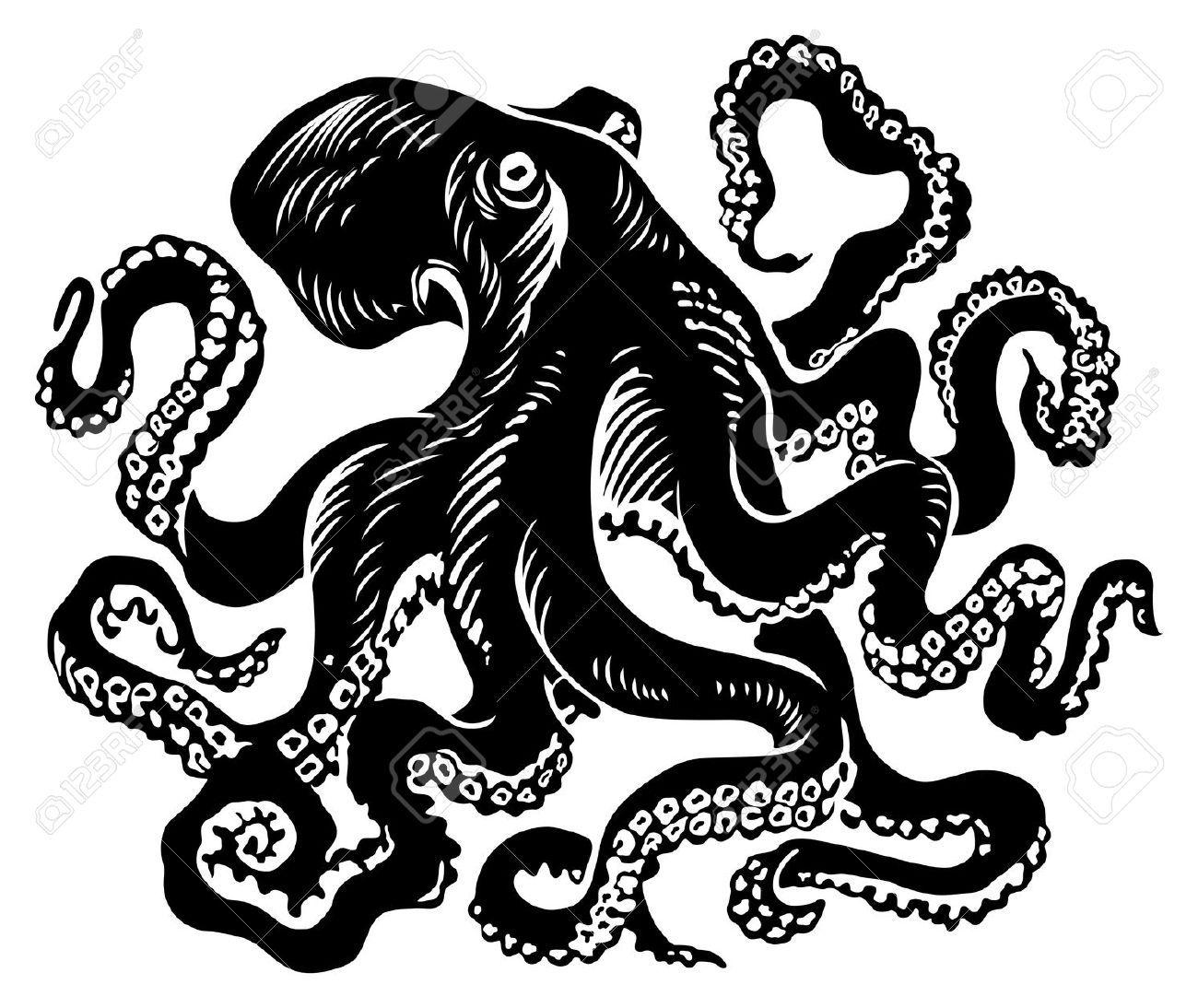 Octopus Illustration Octopus Vector Illustration octopus