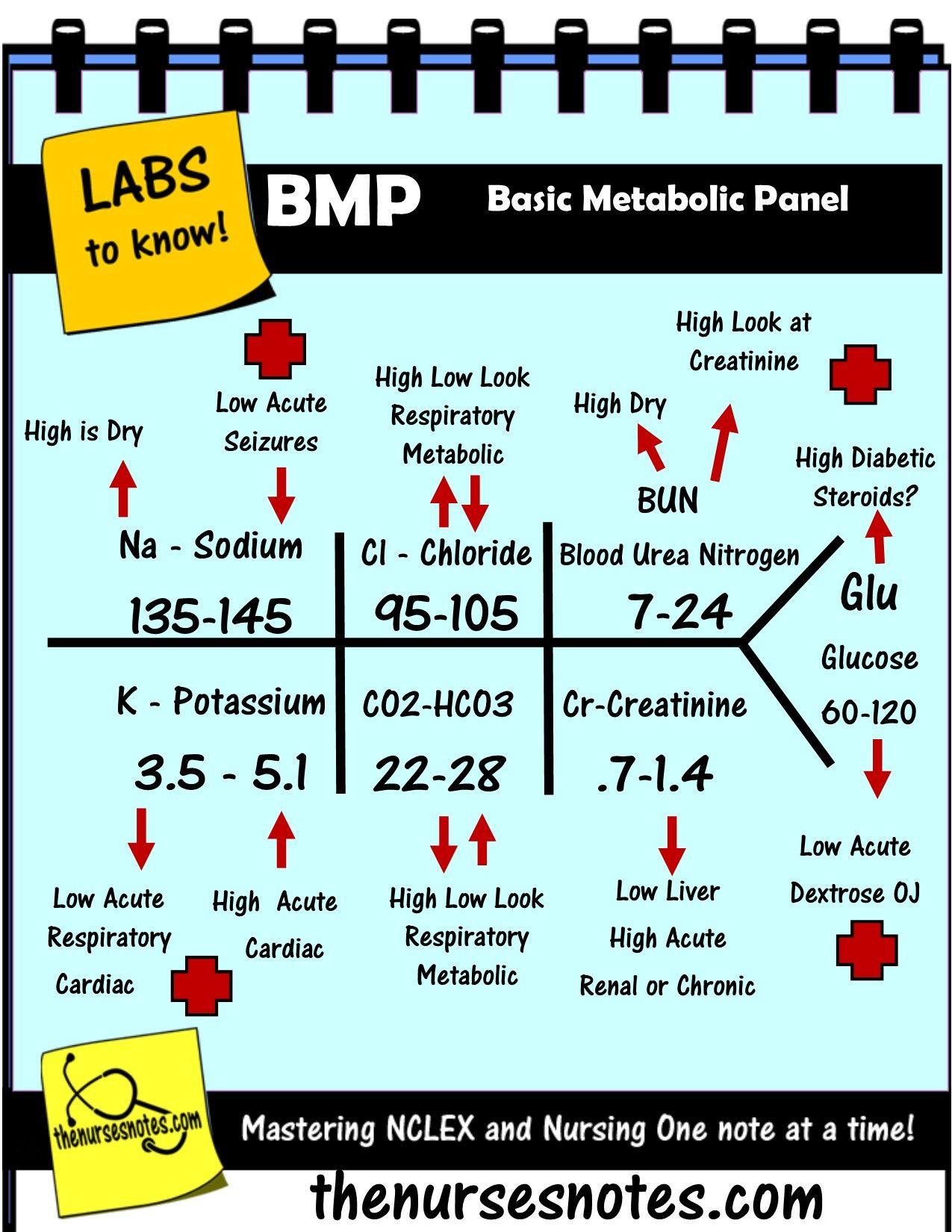 Bmp Chem7 Fishbone Diagram Explaining Labs