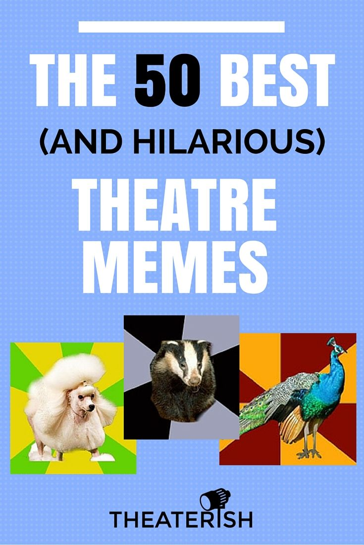 The 50 Best (and most hilarious) Theatre Memes Memes and
