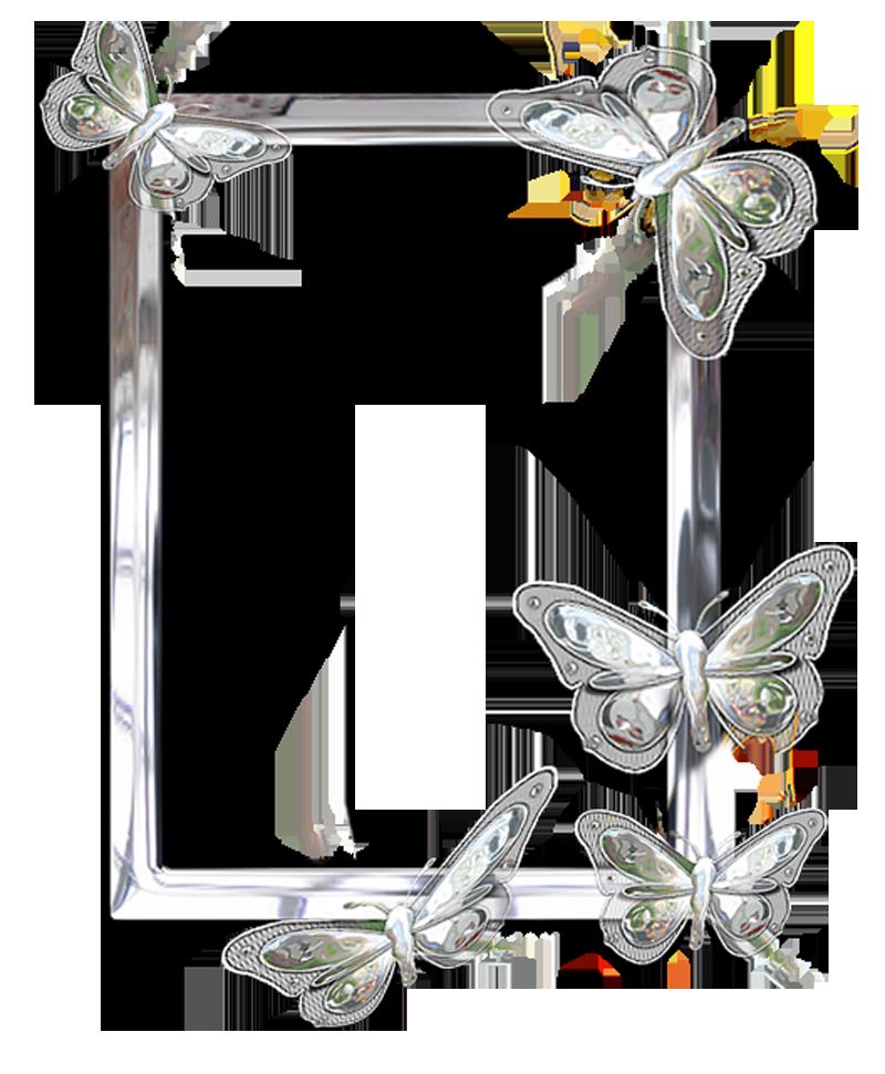 023600236.png (800×971) Frames Pinterest