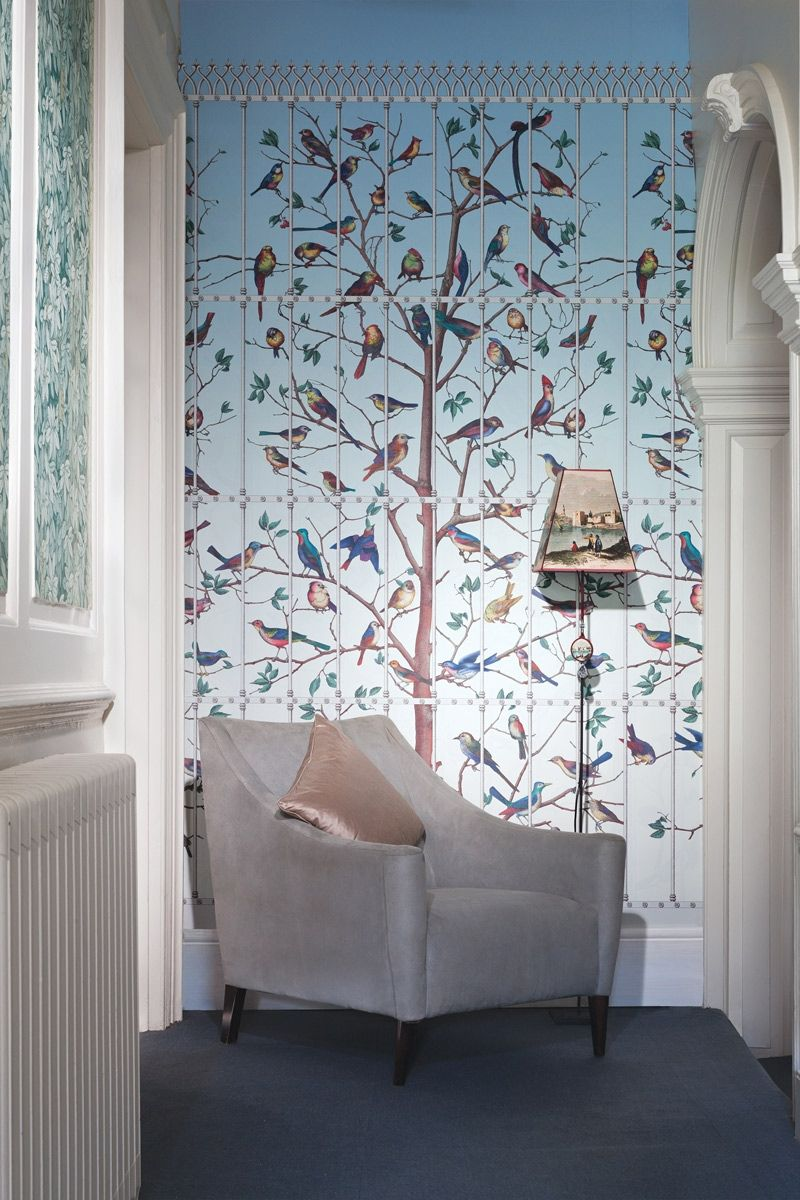 panneau uccelli - cole and son | fornasetti wallpaper