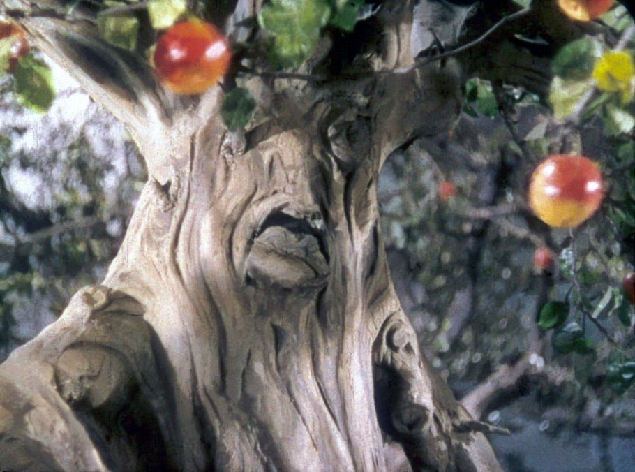 apple tree the wizard of oz trees in movies books records