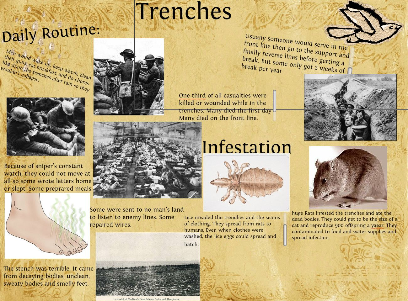 Life In The Trenches Of Ww1