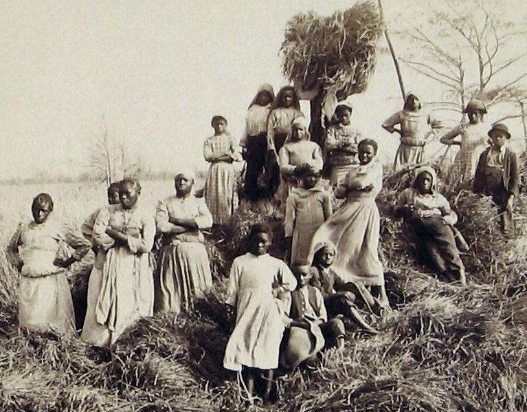 """South Carolina Slave Plantations Previous post """"Lincoln"""