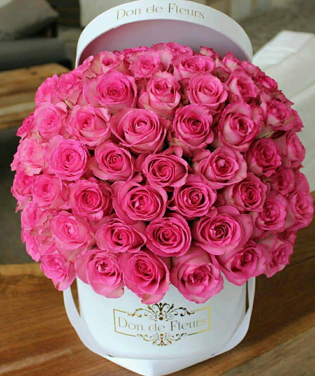 BeautifulBouquets Κήποι Pinterest Flowers, Flower
