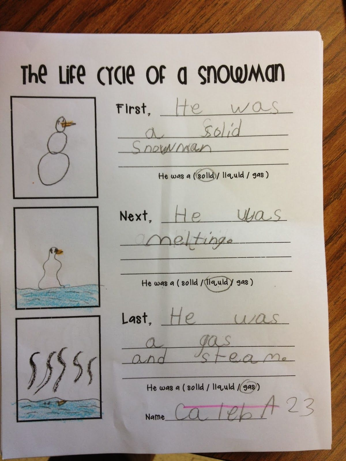 Life Cycle Of A Snowman And States Of Matter
