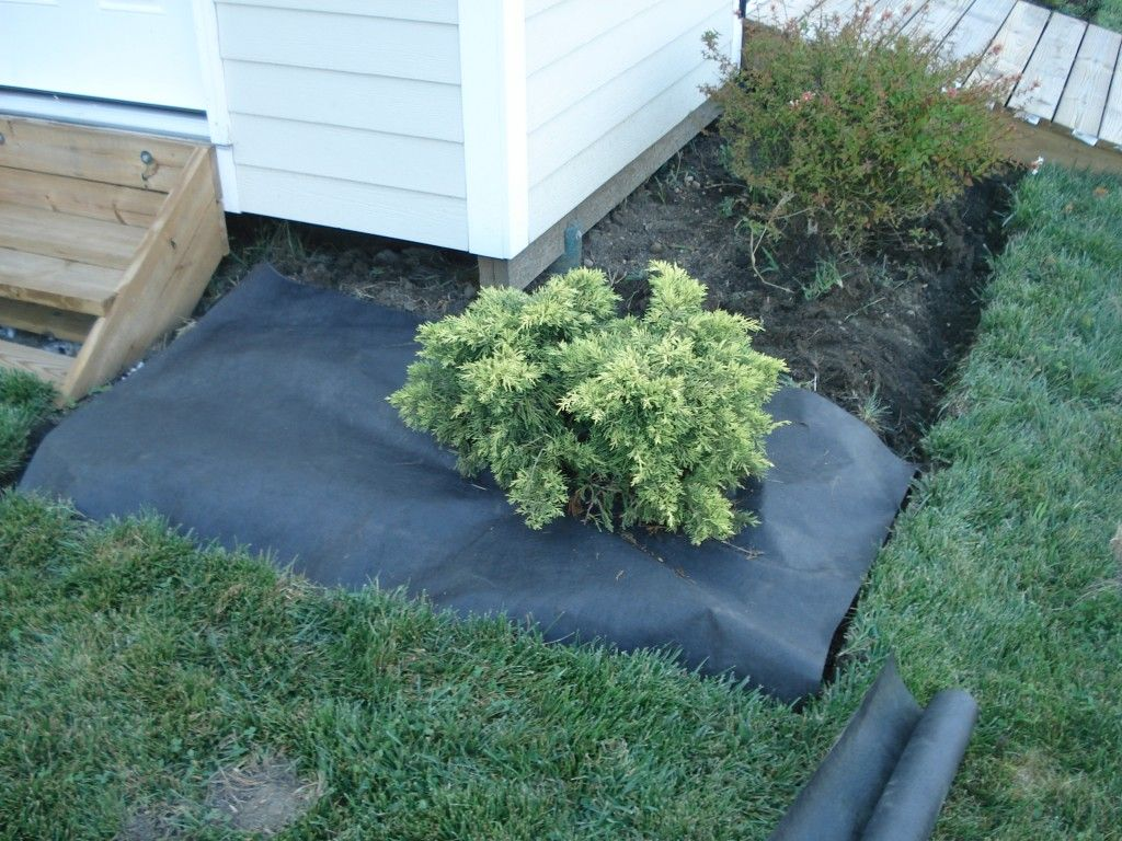 Use landscape fabric to keep weeds out. Unless you love