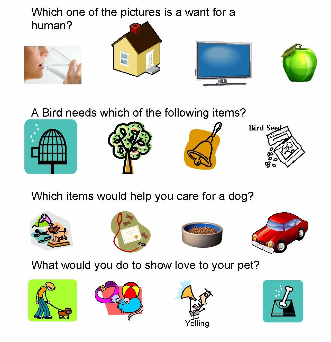 Pet Care Amp Safety Lesson Plans