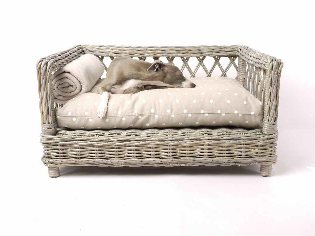 The Raised Rattan Dog Bed Dog Beds Pet Accessories And Dog