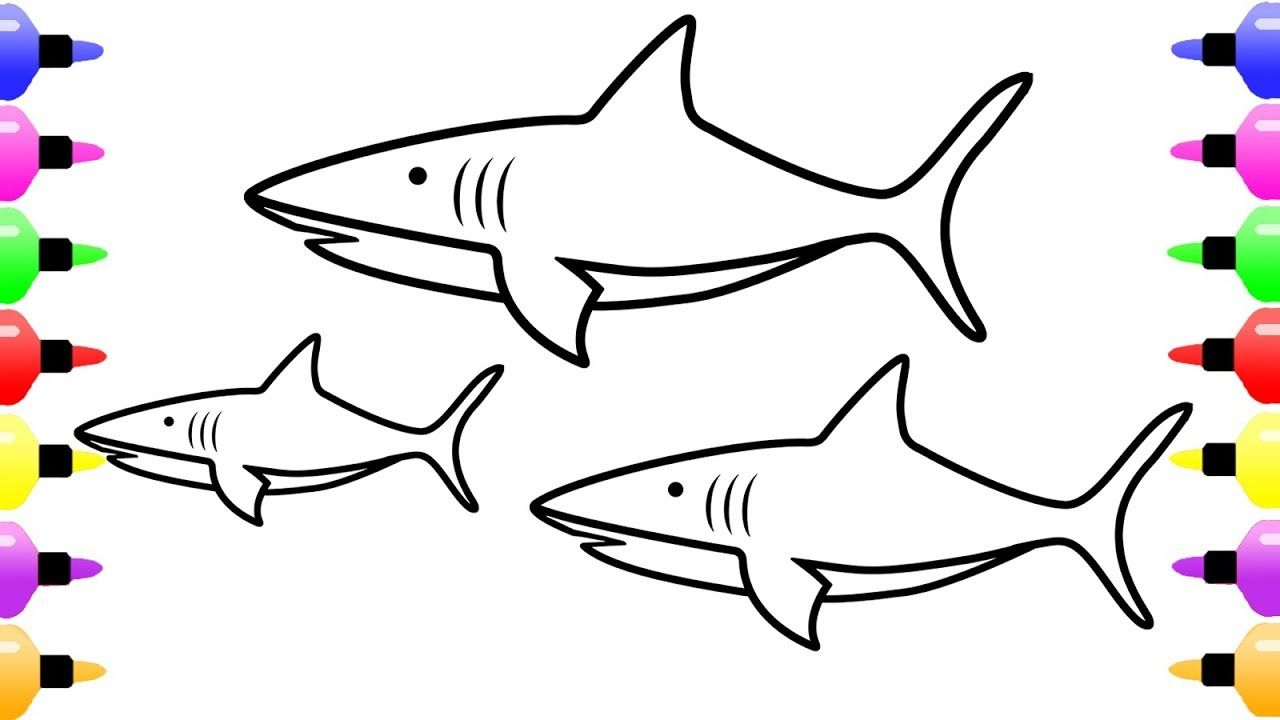 Shark Drawing And Coloring Pages For Kids Fish Coloring Book For