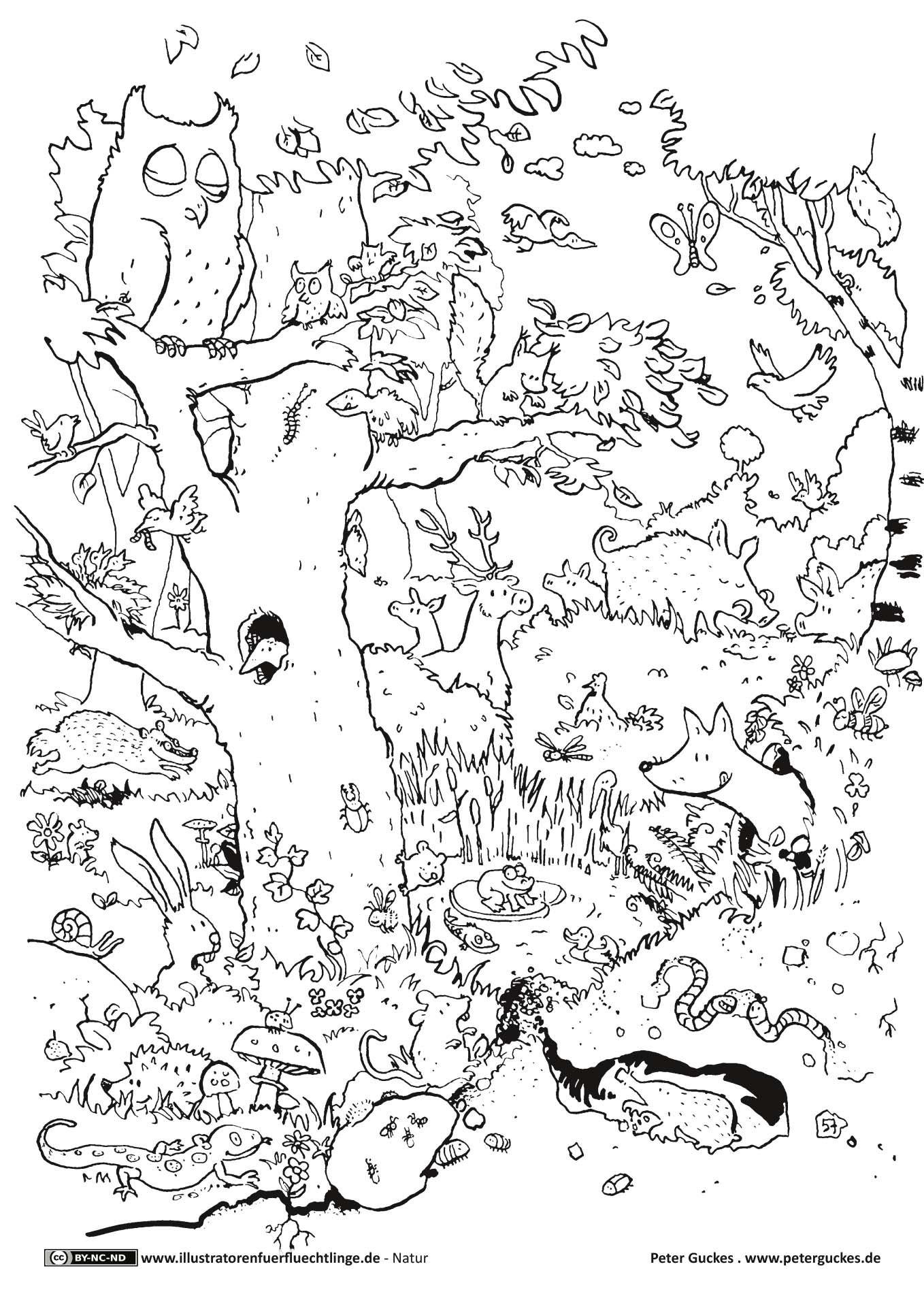 Download Als Natur Wald Tiere