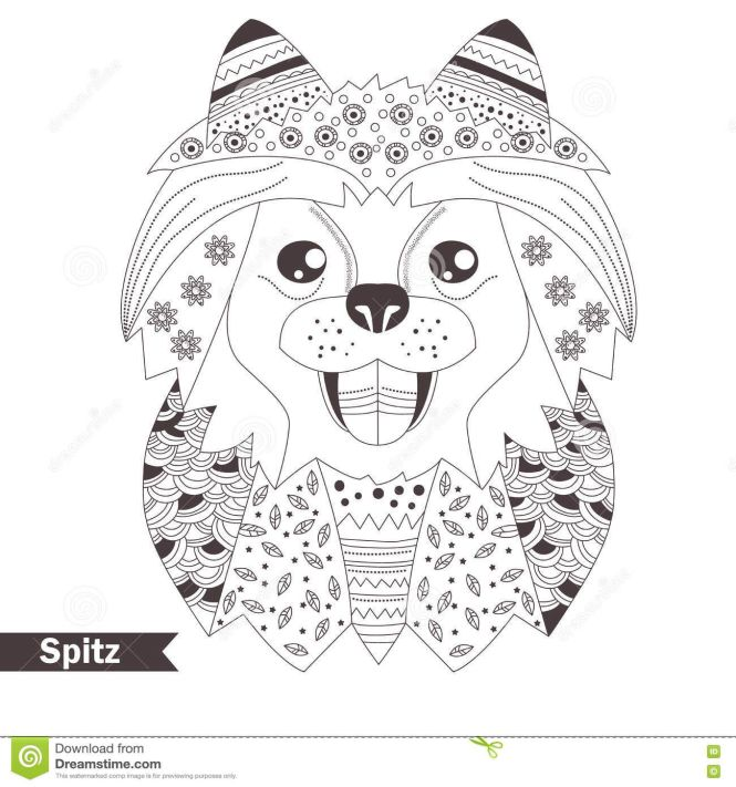 Pomeranian Coloring Pages For S Book