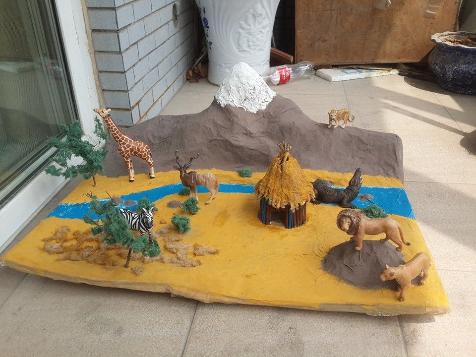 African Savanna diorama African Savannah model made for my