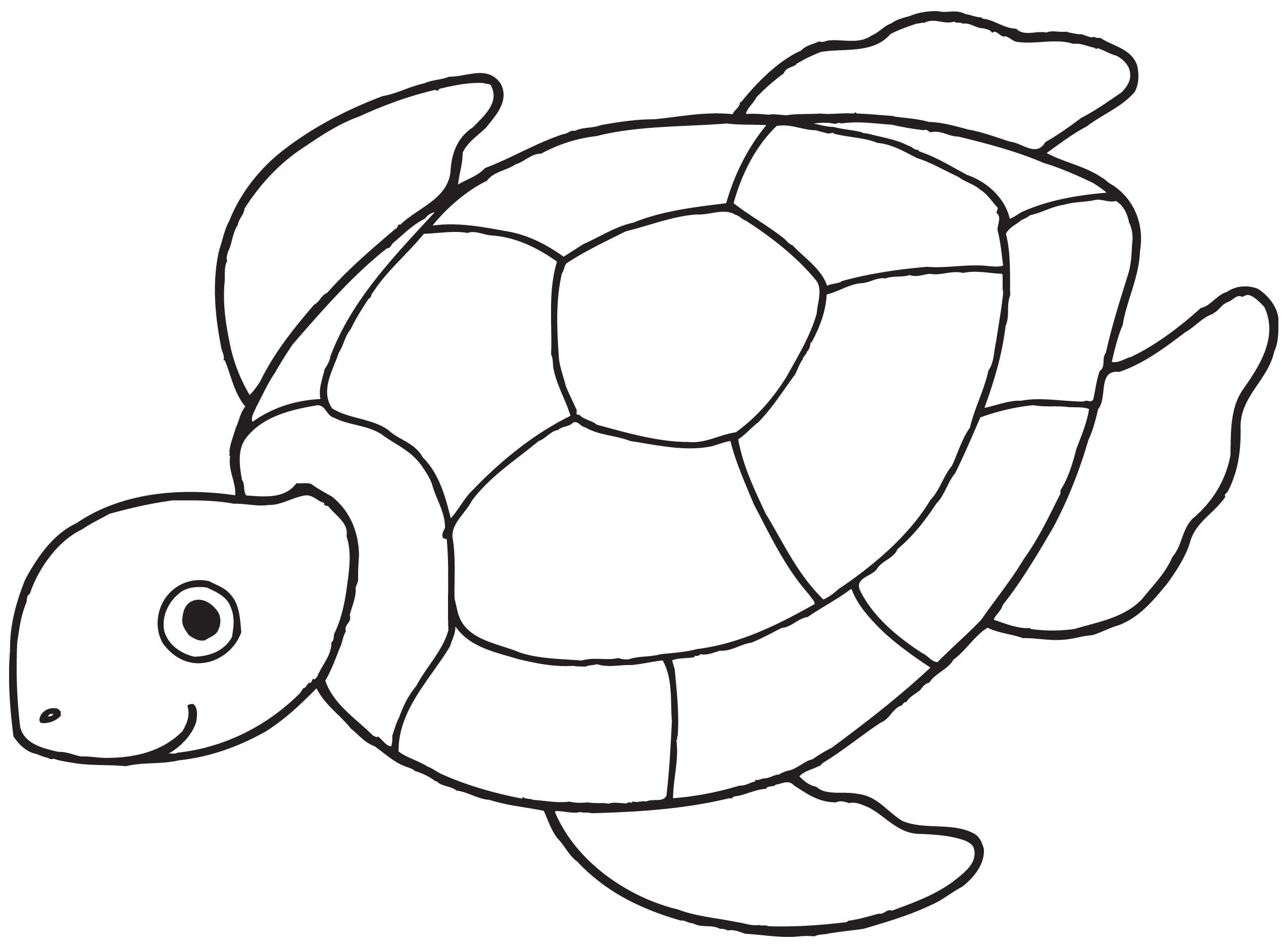 Sea Turtle Coloring Pages For Kids With Free Printable For Kids Inside Incredible