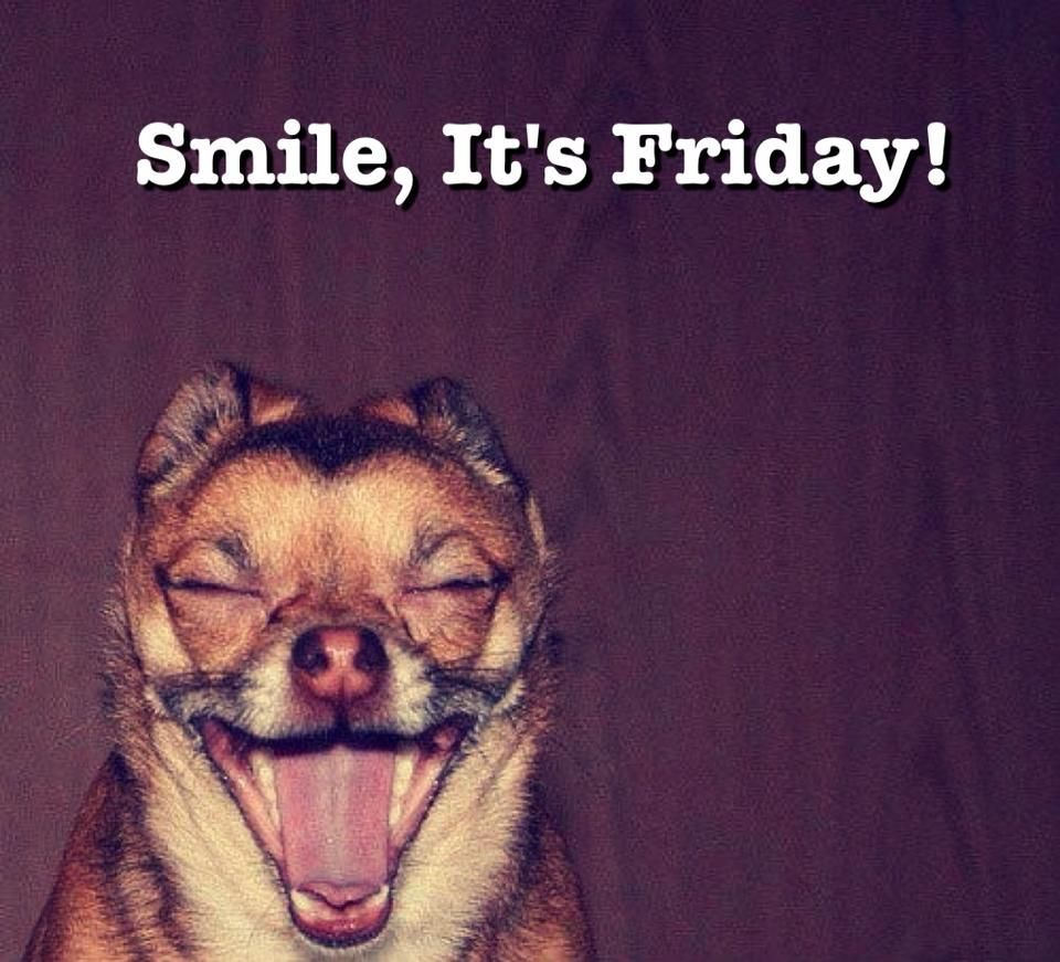 Happy Friday PDP Team Pinterest Happy friday and