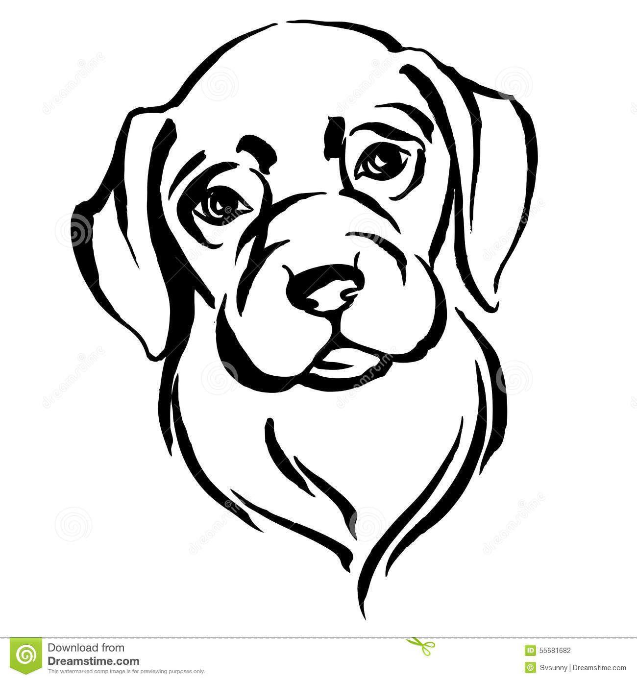 Hand Drawn Portrait Of Dog Labrador Stock Vector